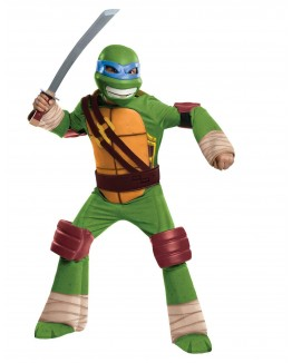 Teenage Mutant Ninja Turtle - Leonardo Kids Costume
