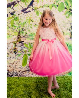 Beautiful Rosette Detail Ombre Printed Tulle Dress